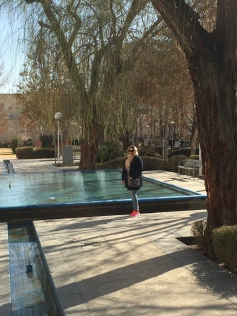 Isfahan - Park 40 kolumn (12)