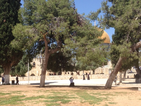 The Temple Mount