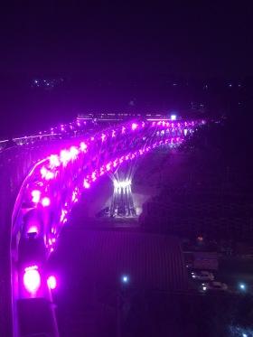Tabiat Bridge