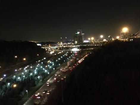 View from Tabiat Bridge