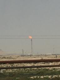 Has fields Bahrain