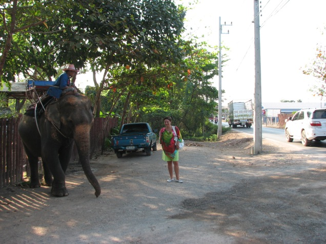 Unsuccessful attempt to ride on elephant