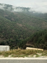 On the way to Dochula Pass