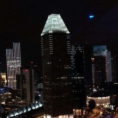 View from Singapore Flyer
