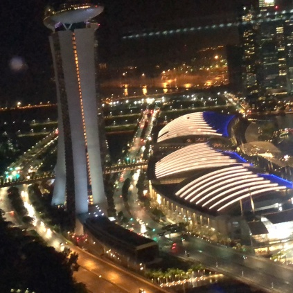 View on Marina Bay from Singapore Flyer