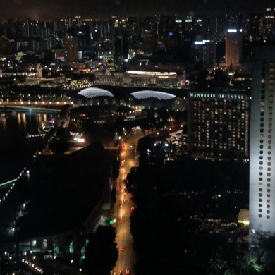 View from Singapore Flyer on the Esplanade