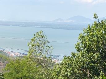 Views from Ho May Park